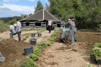 Bodrum Belediyesi 'Gençlik Tarım Kampı' başvuruları başladı