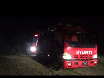 Bodrum'da korkutan yangın! Onlarca zeytin ağacı kül oldu