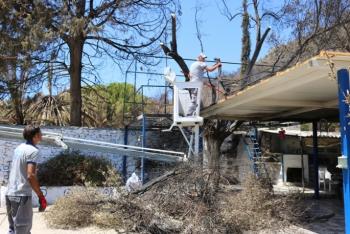 Bodrum'da yangın sonrası hummalı çalışma başlatıldı