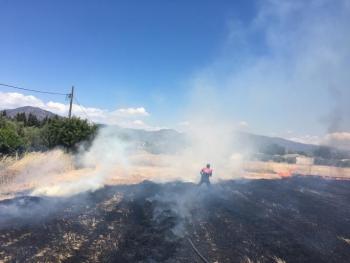 Büyükşehir'den yangınlara karşı uyarı