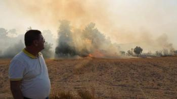 Muğla'da 6 ilçede yangın sürüyor!