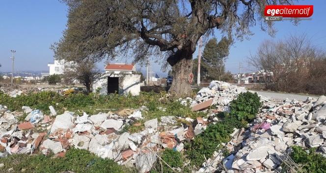300 yıllık anıt ağacınıçöplüğe çevirdiler