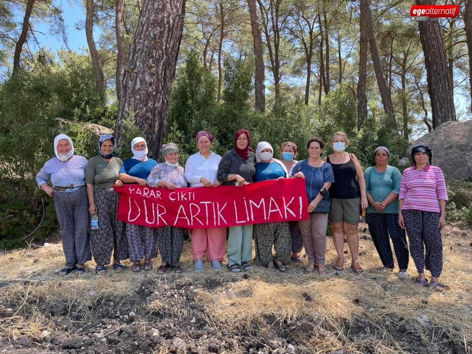 Akbelen Ormanı bilirkişi hakimi HSK'ye şikayet edildi