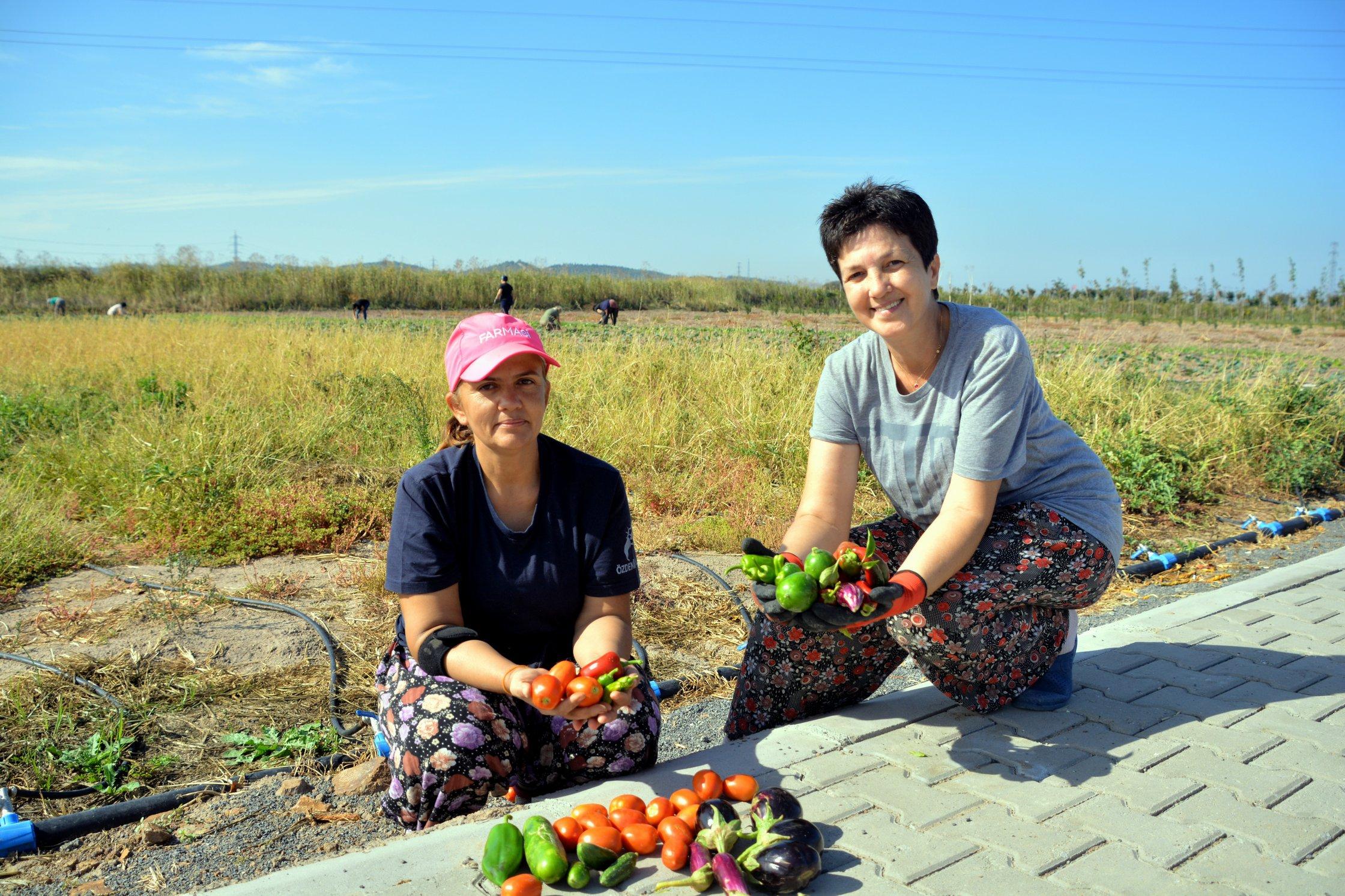 Aliağalı Kadınlardan Doğal Tarım Atağı