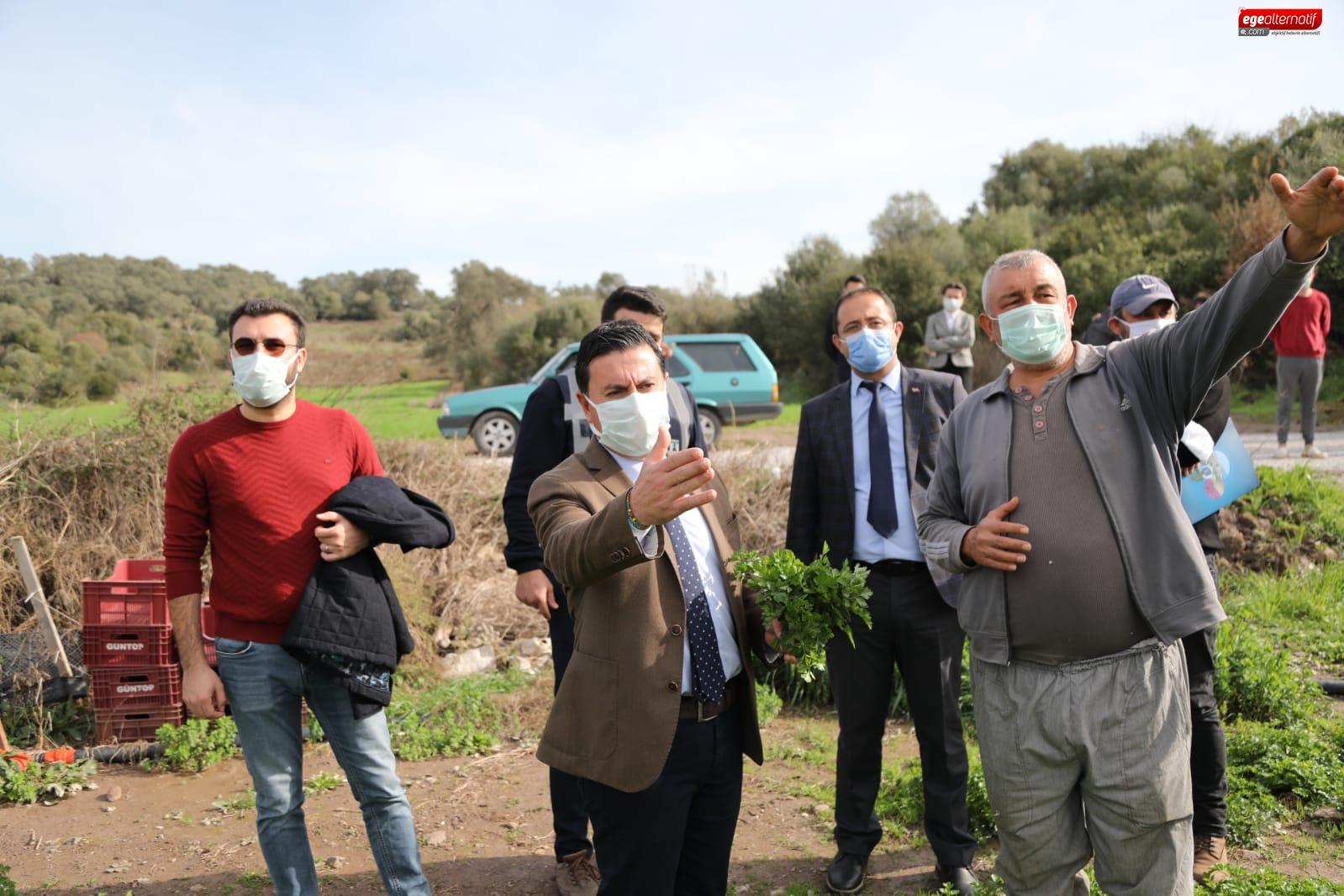 Başkan Aras Tarımsal Çalışmaları Yerinde İnceledi