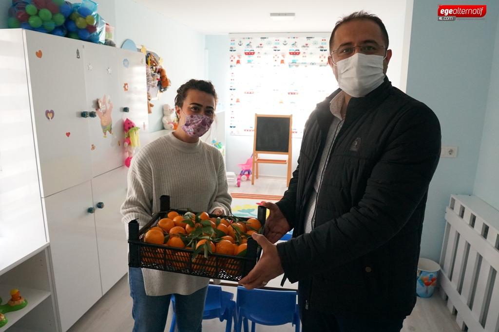 Bodrum'da 3 ton mandalina ücretsiz olarak dağıtıldı