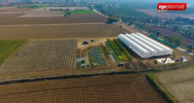 Büyükşehirden 'Akıllı Tarım' çiftliği