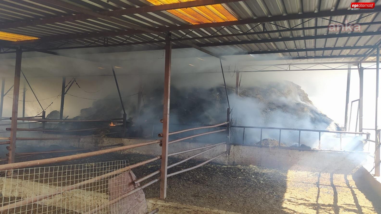 Çine'de ahır yangını