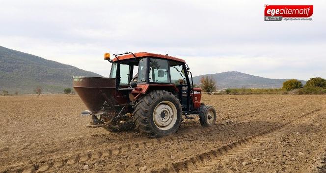 Menteşe'de ata tohumu buğdaylar toprakla buluştu