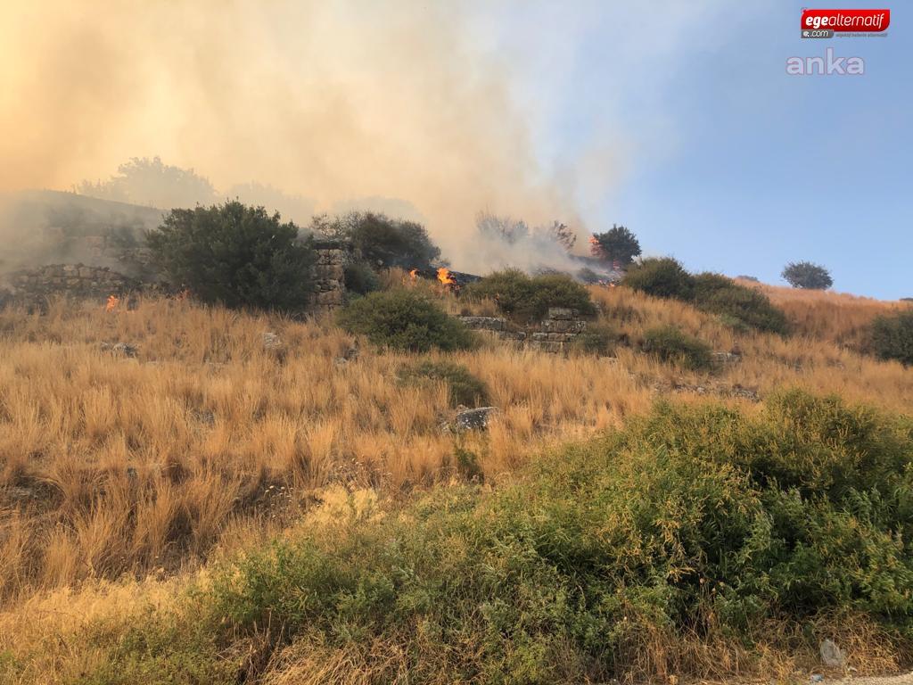 Yangınlar Sonrası Kaç Hektar Orman Arazisi İmara Açıldı?